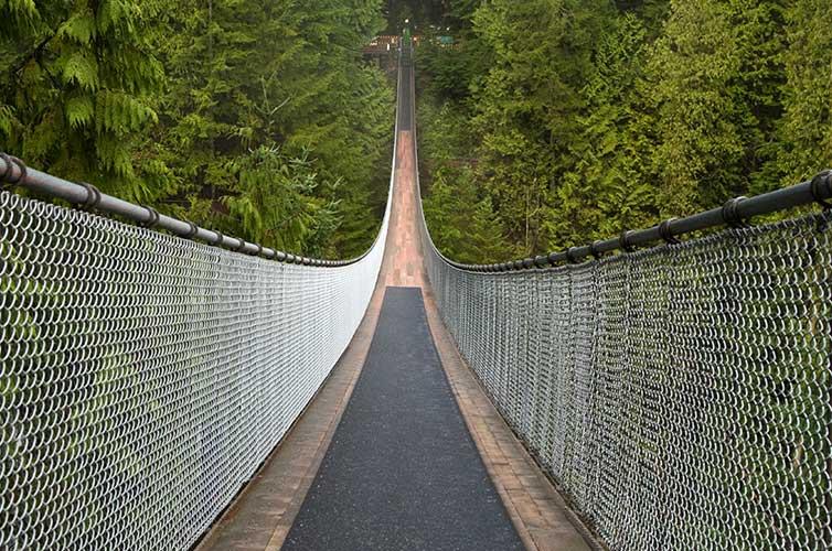vancouver suspension bridge