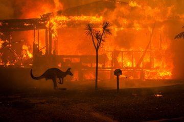 support australia wildfires