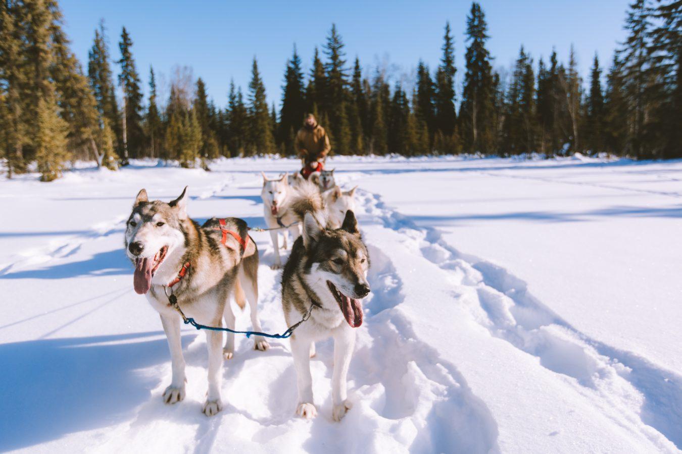 best winter destinations